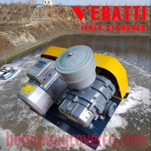 Máy thổi khí đầu AT Veratti